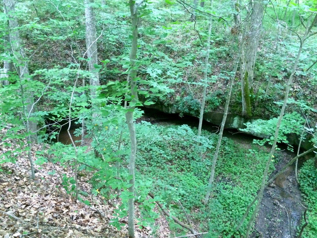 There are a series of caves -- cliff overhangs, more accurately -- along the trail.