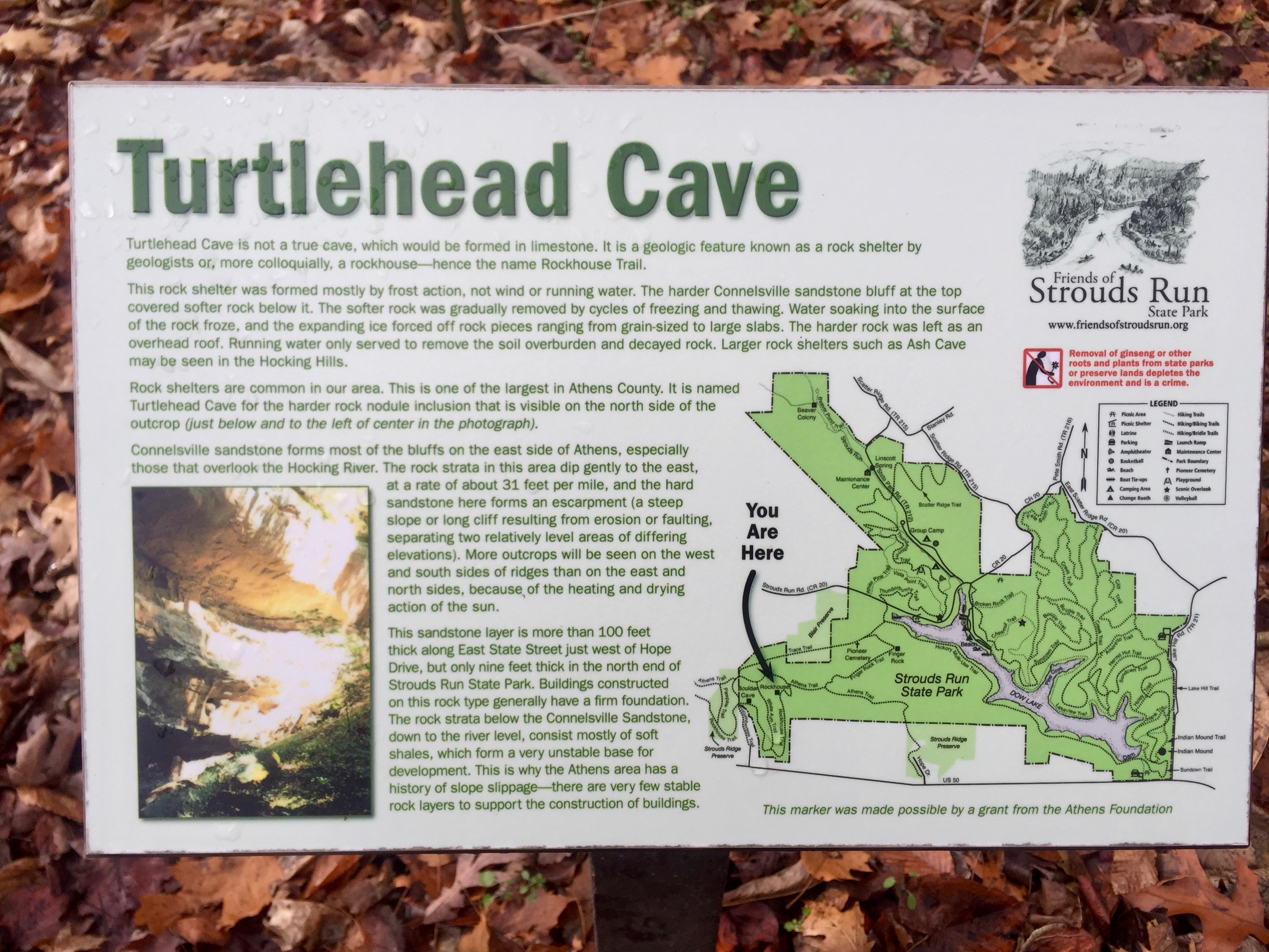 One of the coolest things about hiking in and around Stroud's Run is the informational signs along the way. i always stop to read them, even if I've already done so multiple times. This one is for Turtlehead Cave, a key sight along the Rockouse Trail