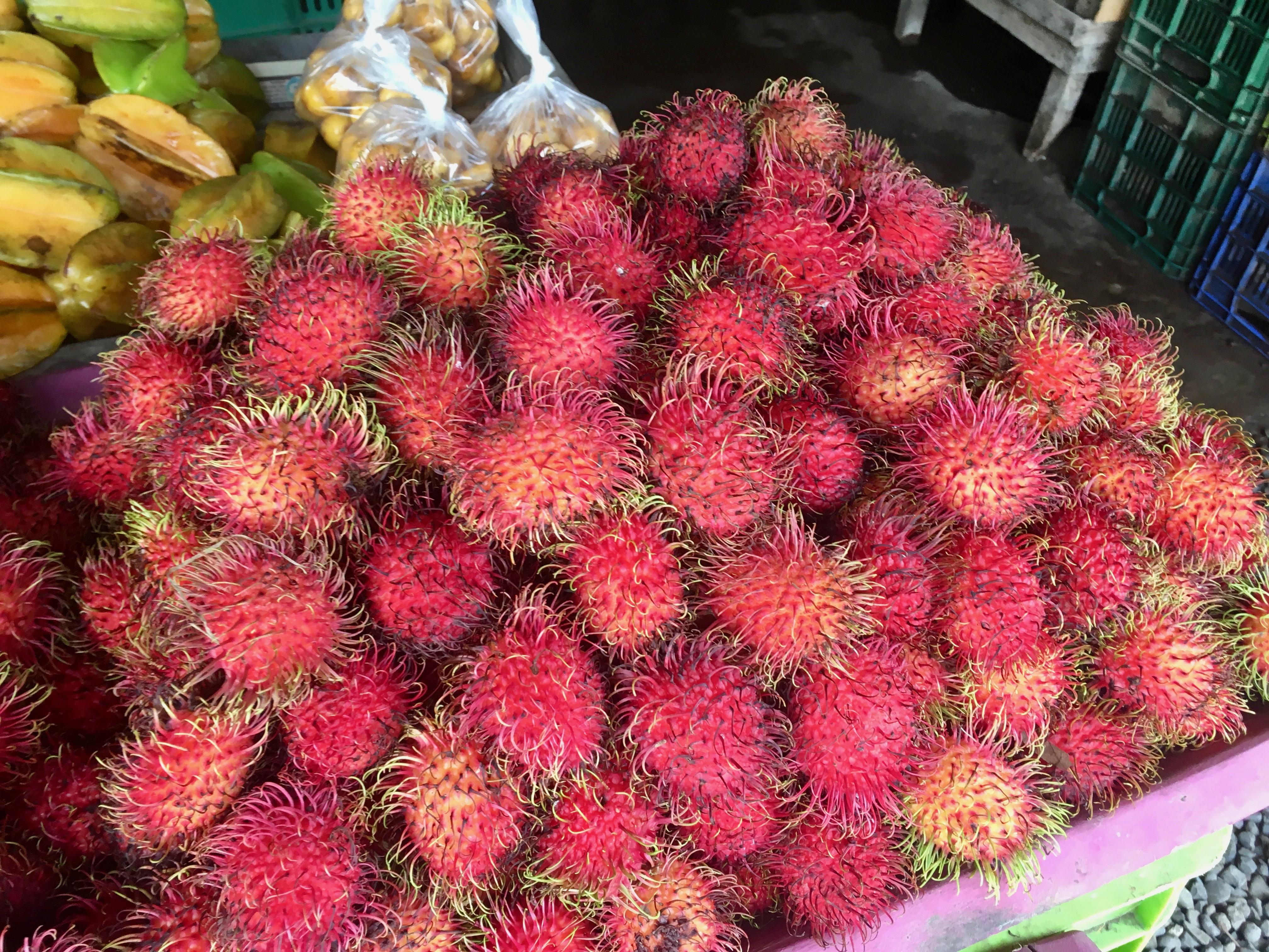 Rambutan at the market near Rio Tarcoles